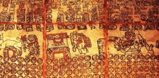 Mayan Indian Codices